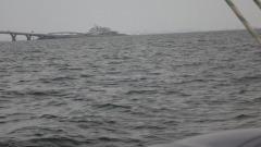 木更津- 1.jpg